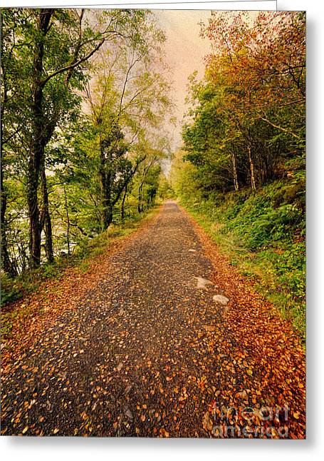 North Wales Greeting Cards - Country Lane Greeting Card by Adrian Evans