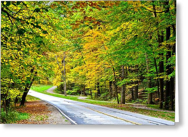 Oil Slick Greeting Cards - Country Road Greeting Card by Frozen in Time Fine Art Photography