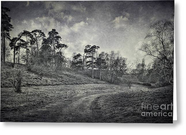 White River Scene Digital Art Greeting Cards - Country Road Greeting Card by Svetlana Sewell