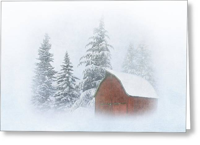 Country Winter-2 Greeting Card by Angie Vogel
