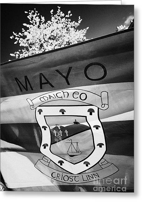 Westport Greeting Cards - County Mayo Gaa County Flag Republic Of Ireland Greeting Card by Joe Fox