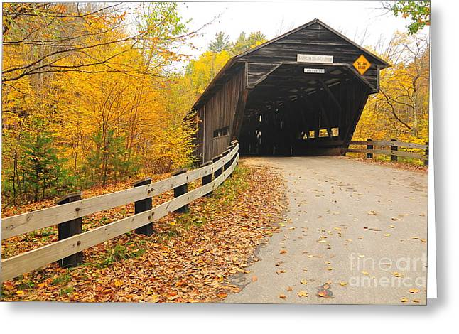 Covered Bridge Greeting Card by Catherine Reusch  Daley