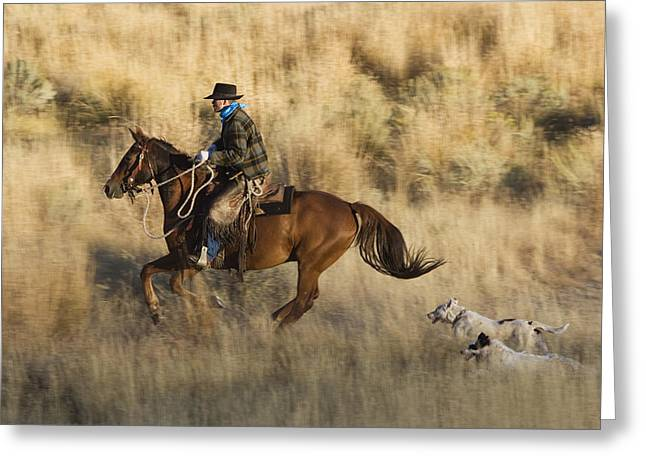 Equidae Greeting Cards - Cowboy Riding With Dogs Oregon Greeting Card by Konrad Wothe
