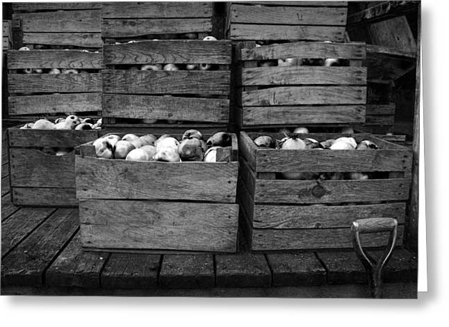 Harvest Art Greeting Cards - Crated Apples waiting for the Cider Press Greeting Card by Randall Nyhof