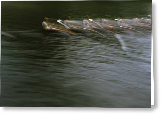Sculling Greeting Cards - Crew Racing, Seattle, Washington State Greeting Card by Panoramic Images