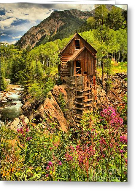 Water Powered Generator Greeting Cards - Crystal Mill Wildflowers Greeting Card by Adam Jewell