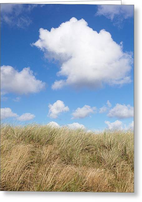 Cumulus Clouds Greeting Cards - Cumulus Clouds And Dune Landscape Greeting Card by Panoramic Images