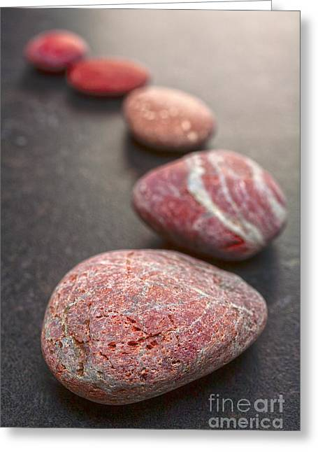 Stepping Stones Greeting Cards - Curving Line of Red and Grey Pebbles on Dark Background Greeting Card by Colin and Linda McKie