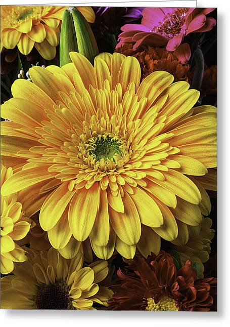 Aster Greeting Cards - Daisy bouquet Greeting Card by Garry Gay