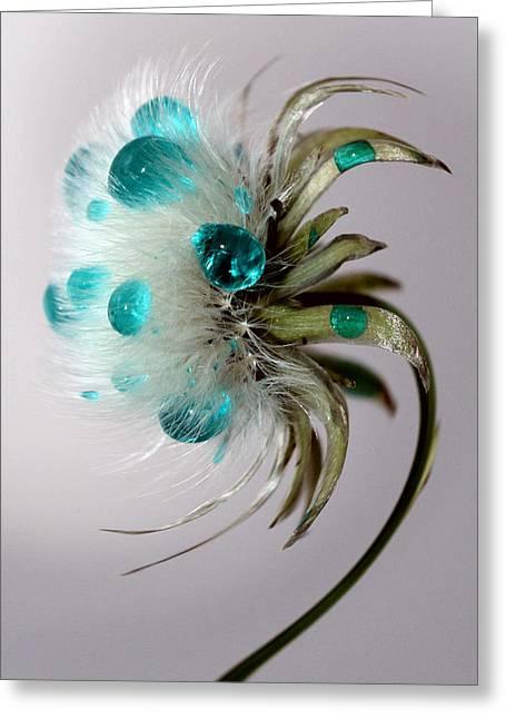 Dandelion Blues Greeting Card by Krissy Katsimbras