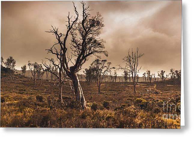 Dark Woods Greeting Cards - Dark horror landscape of a creepy haunted forest Greeting Card by Ryan Jorgensen