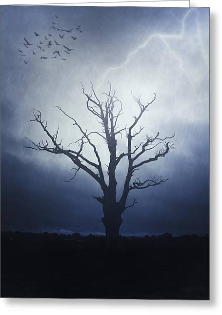 Eerie Greeting Cards - Dead Tree Greeting Card by Joana Kruse