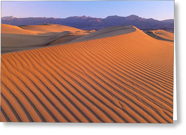 Undulating Greeting Cards - Death Valley National Park, California Greeting Card by Panoramic Images