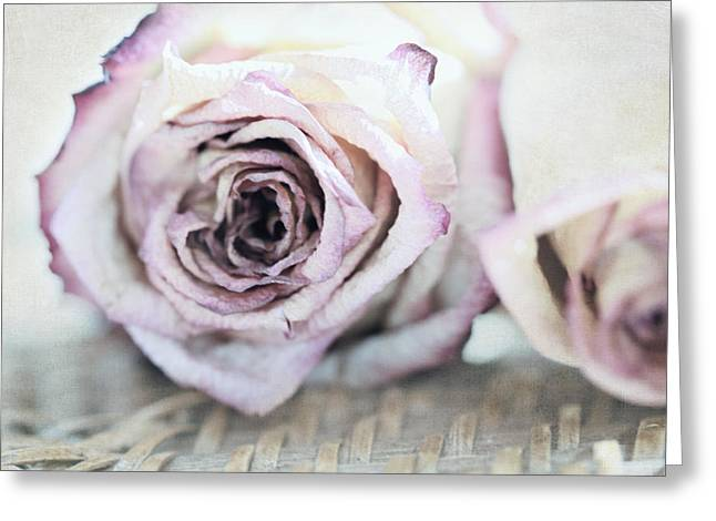 Textured Floral Greeting Cards - December Roses Greeting Card by Bonnie Bruno