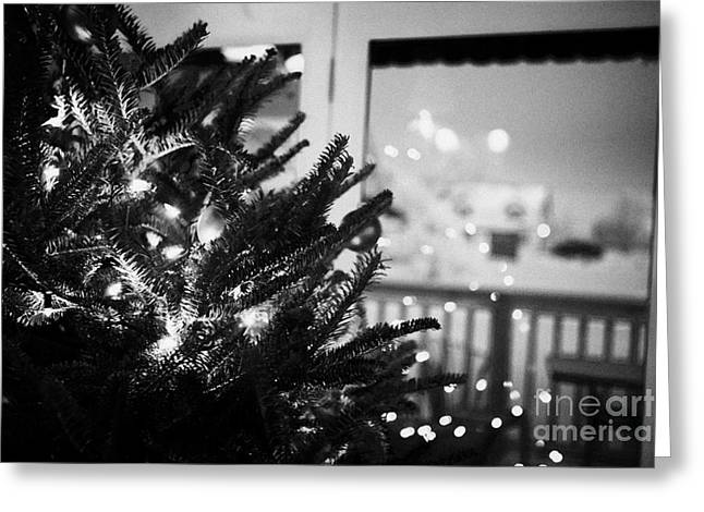 Harsh Conditions Photographs Greeting Cards - decorated christmas tree looking out of window to snow covered scene in small rural village of Forge Greeting Card by Joe Fox