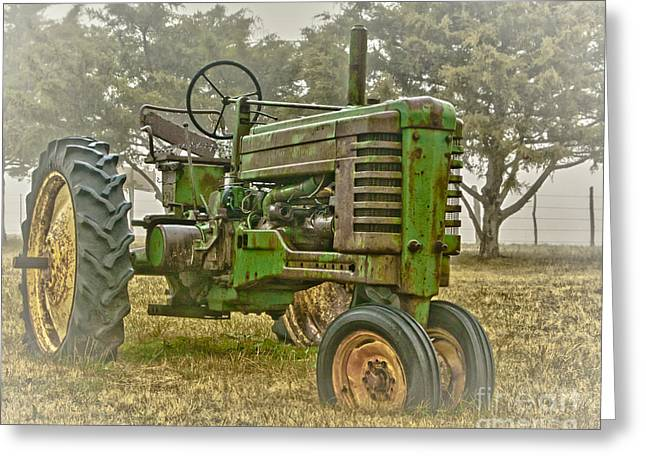 Milo Greeting Cards - Deere In Mist Greeting Card by Robert Frederick