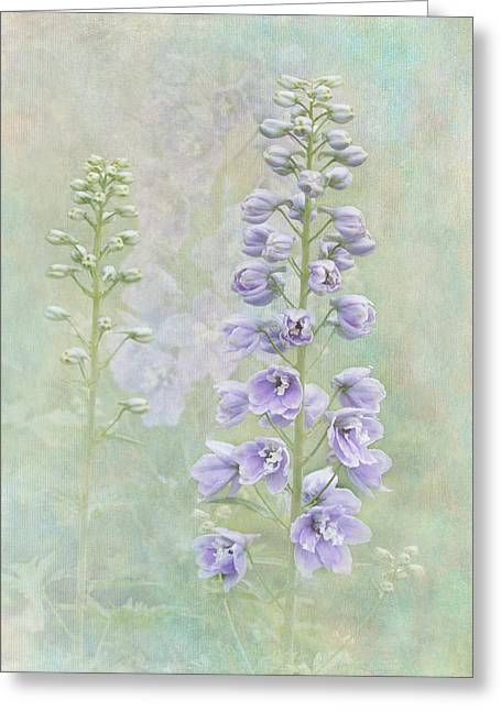 Delphinium Greeting Cards - Delphinium Greeting Card by Angie Vogel