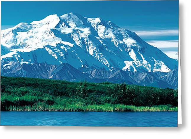 Snow Capped Greeting Cards - Denali National Park Ak Usa Greeting Card by Panoramic Images