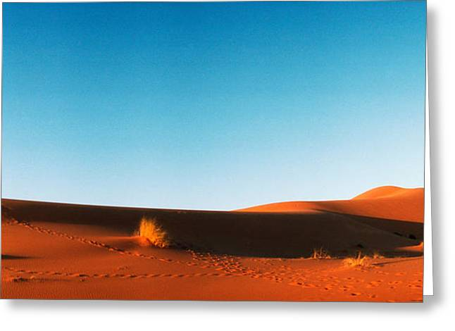 Sahara Sunlight Greeting Cards - Desert At Sunrise, Sahara Desert Greeting Card by Panoramic Images