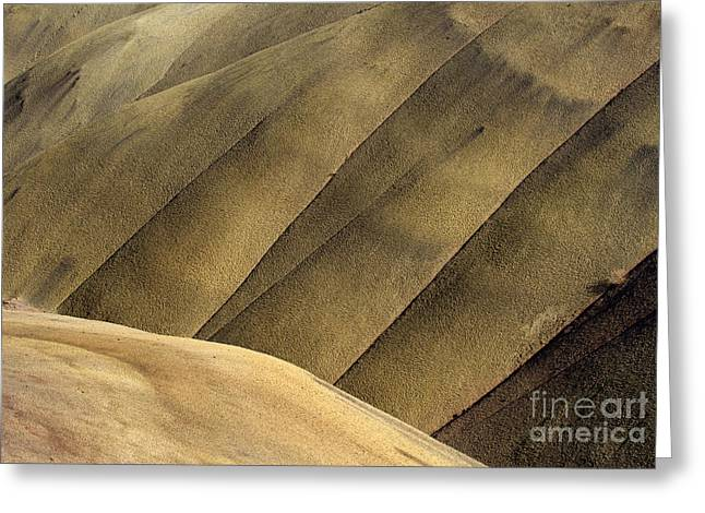 Central Greeting Cards - Desert Lines Greeting Card by Mike  Dawson