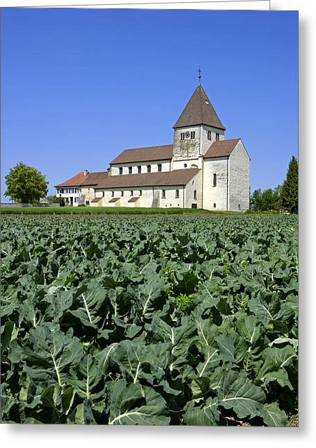 Insel Greeting Cards - Deutschland, Insel Reichenau Am Greeting Card by Tips Images