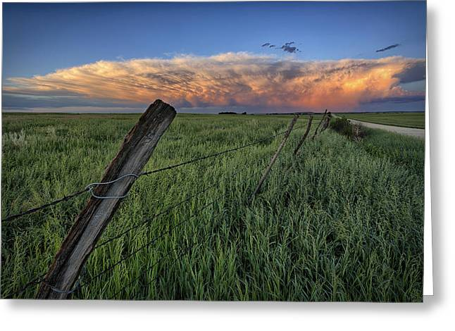 Prairies Greeting Cards - Distant Color Greeting Card by Thomas Zimmerman
