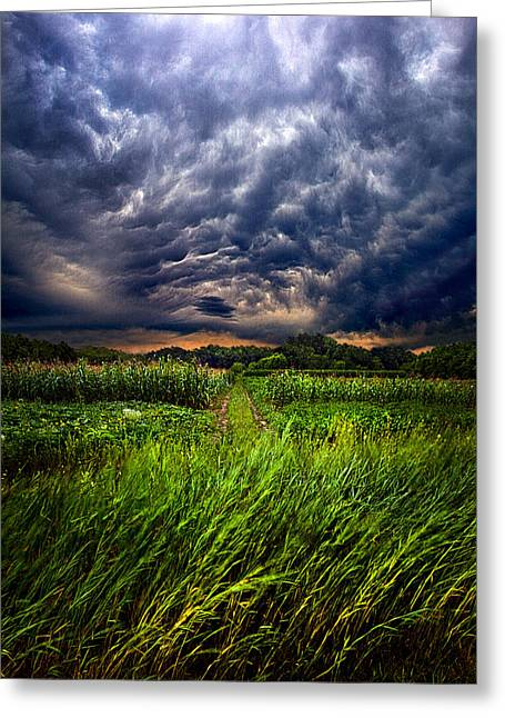 Blue Shadows Greeting Cards - Disturbance Greeting Card by Phil Koch