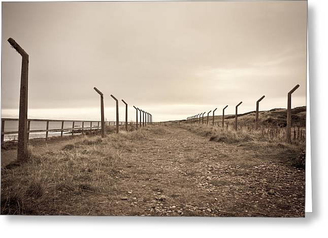 Geology Photographs Greeting Cards - Disused path Greeting Card by Tom Gowanlock
