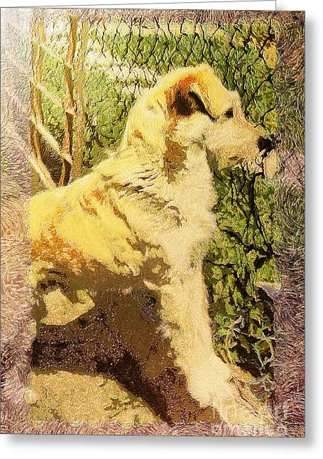 Alertness Paintings Greeting Cards - Dog portrait Greeting Card by Odon Czintos