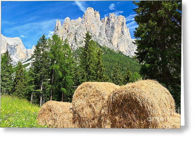 Hay Bales Greeting Cards - Dolomiti - alpine pasture Greeting Card by Antonio Scarpi