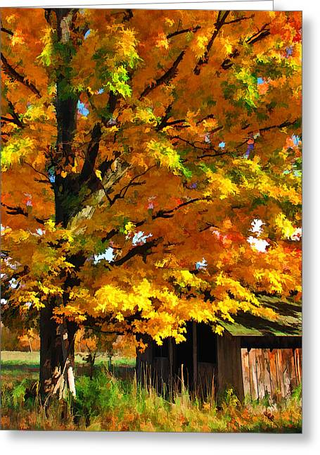 Shack Greeting Cards - Door County Yellow Maple Migrant Shack Greeting Card by Christopher Arndt