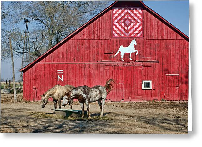 Painted Barn Quilt Greeting Cards - Double Bar N #4 Greeting Card by Nikolyn McDonald