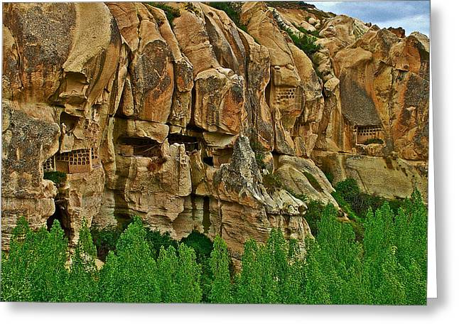 Dovecote Greeting Cards - Dovecotes and Poplars in Pigeon Valley in Cappadocia-Turkey  Greeting Card by Ruth Hager