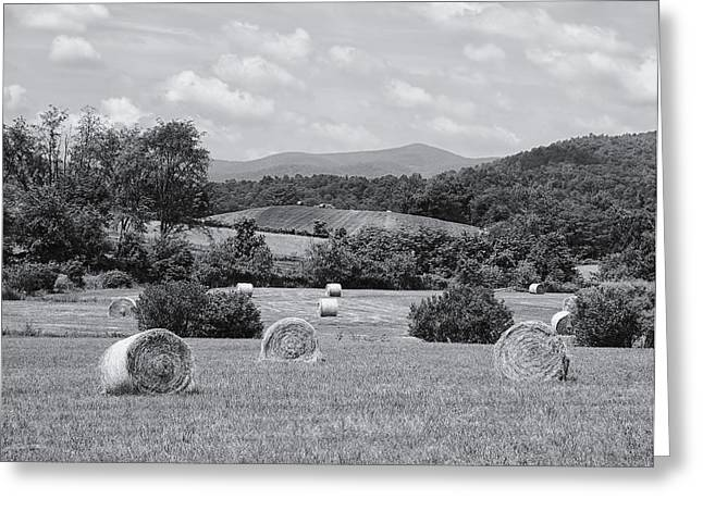Farmers Field Greeting Cards - Down on the Farm Greeting Card by Kim Hojnacki