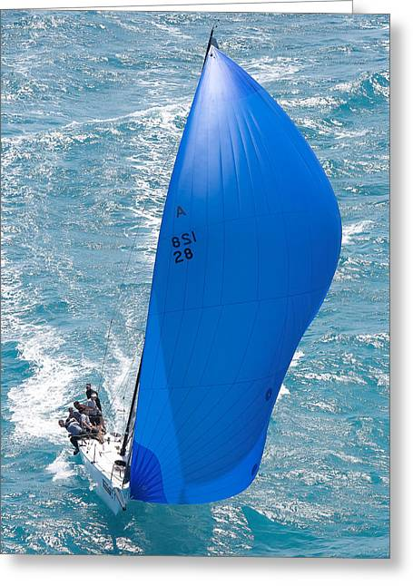 Blue Sailboat Greeting Cards - Downwind Miami Greeting Card by Steven Lapkin