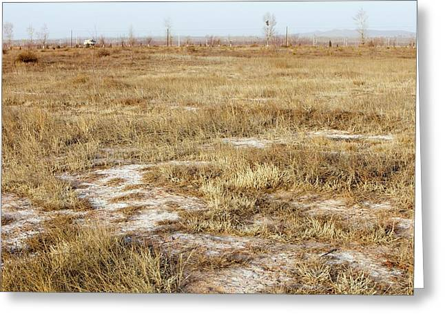 Dried Up Lake Bed From Drought Greeting Card by Ashley Cooper
