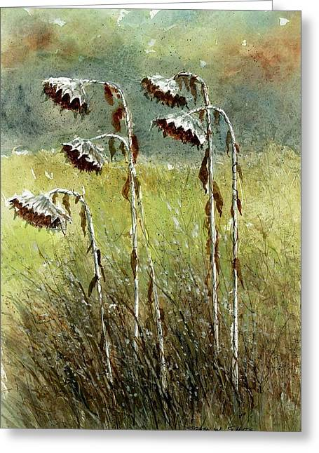 Award Winning Floral Art Greeting Cards - Dried Up Sunflower Patch Greeting Card by Steven Schultz