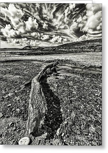 Drifter Photographs Greeting Cards - Driftwood Mono Greeting Card by Steve Purnell