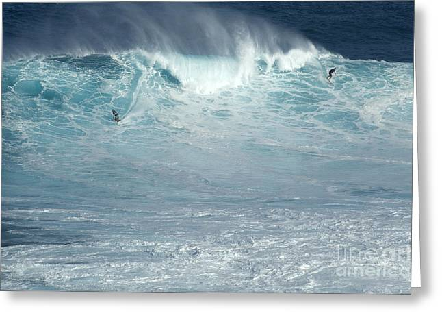 Adrenalin Greeting Cards - Dropping In Greeting Card by Bob Christopher