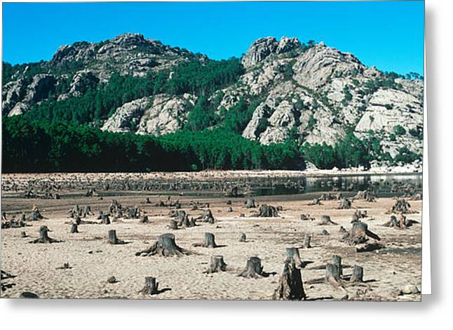Mud Greeting Cards - Drought On Bavella Lake, Corsica, France Greeting Card by Panoramic Images