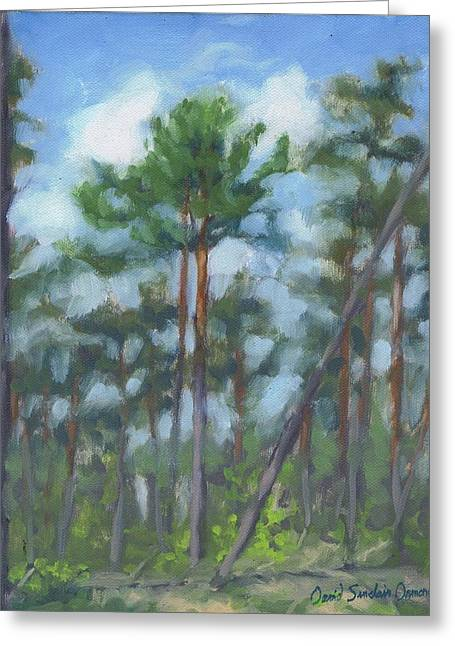 Fontainebleau Forest Greeting Cards - Dry spring - printemps sec Greeting Card by David Ormond