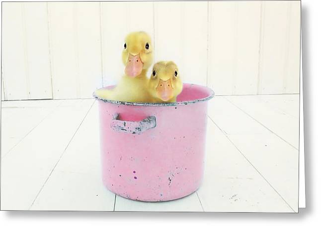 Ducklings Greeting Cards - Duck Soup  Greeting Card by Amy Tyler