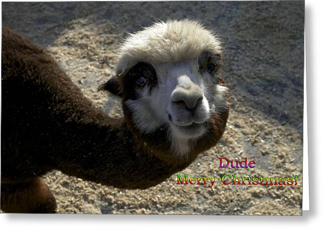 Dude Merry Christmas Greeting Card by Thomas Woolworth
