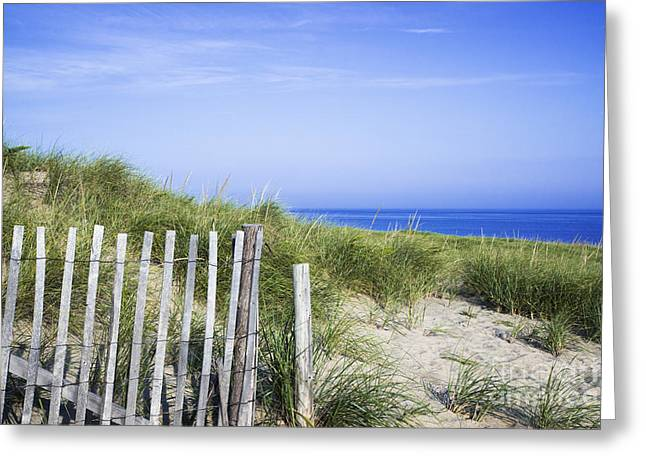 Beach Vista Greeting Cards - Dune Fence Greeting Card by John Greim