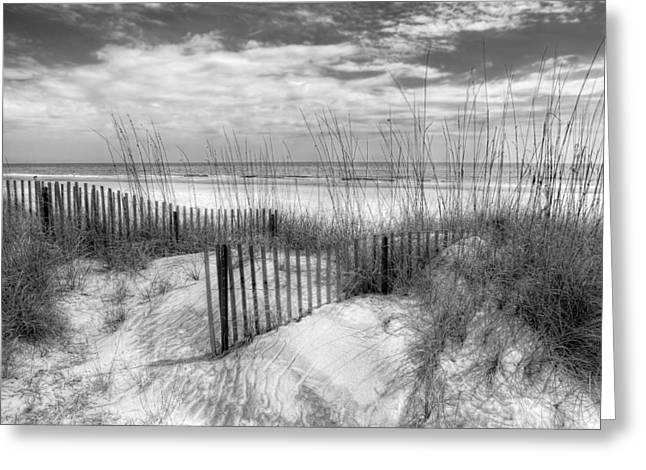 Sanddune Greeting Cards - Dune Fences Greeting Card by Debra and Dave Vanderlaan