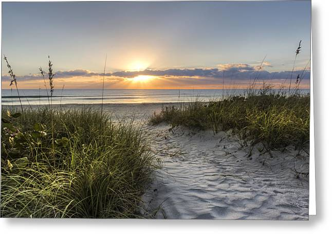 Sunrise On Beach Greeting Cards - Dune Trail Greeting Card by Debra and Dave Vanderlaan
