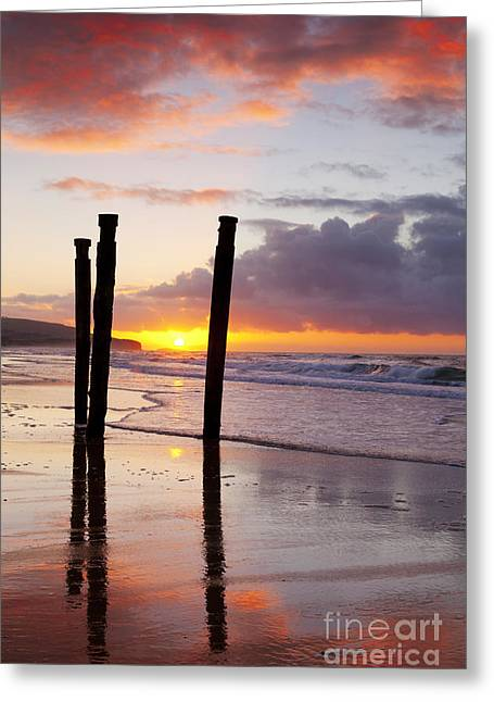 Dunedin Greeting Cards - Dunedin St Clair Beach at Sunrise Greeting Card by Colin and Linda McKie