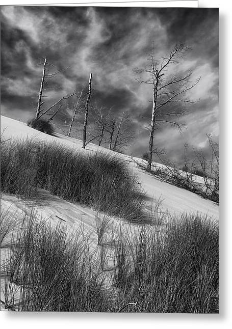Baltic Sea Greeting Cards - Dunes of the Beach Greeting Card by Mountain Dreams