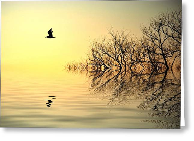 Trees Reflecting In Water Greeting Cards - Dusk Flight Greeting Card by Sharon Lisa Clarke
