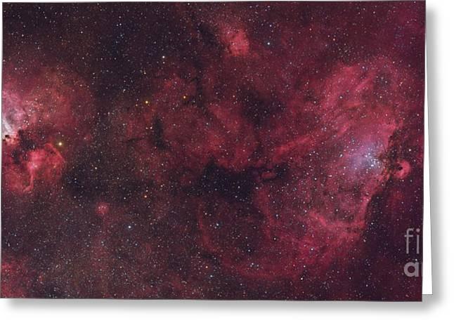 Eagle Nebula And Swan Nebula Greeting Card by Roberto Colombari